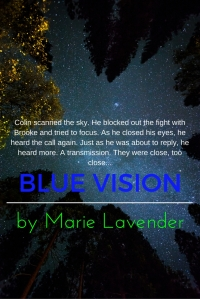 blue-vision-promo5